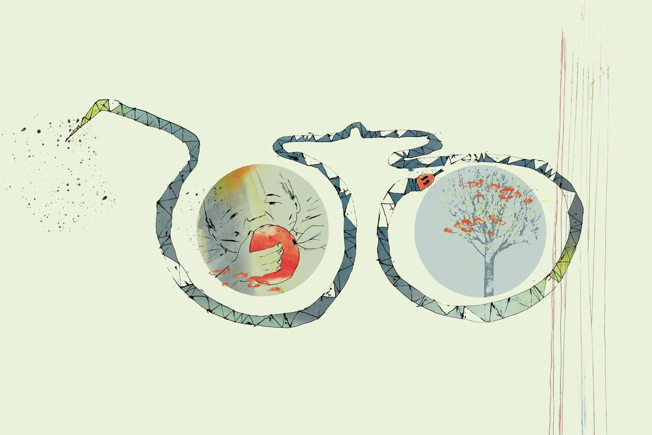Paradisets Have. Fortælling af Jens Peter Madsen illustreret af Tanja Eijgendaal for Storybox.dk