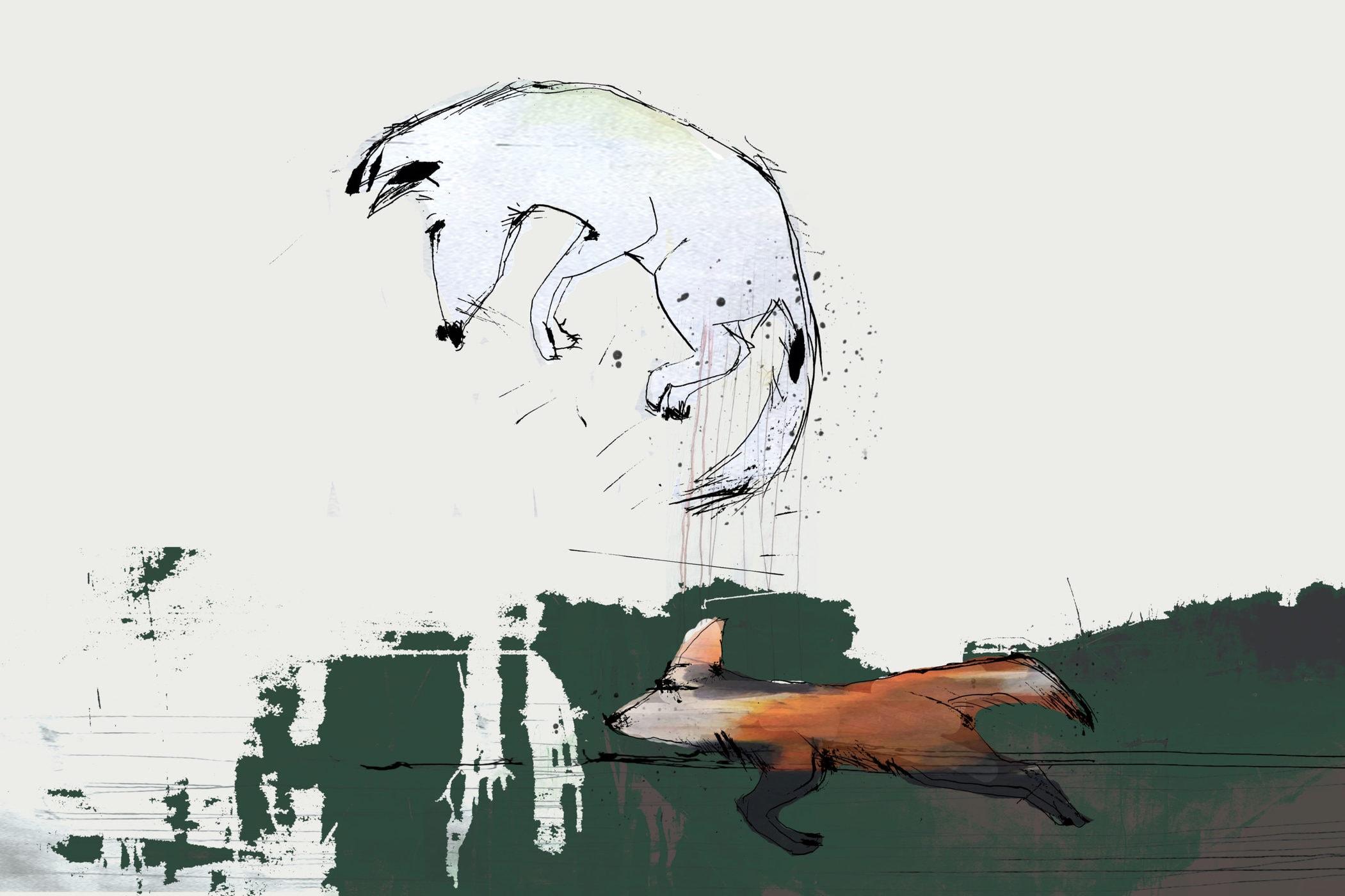 Ræveskindet. Fortælling af Jens Peter Madsen illustreret af Tanja Eijgendaal for Storybox.dk