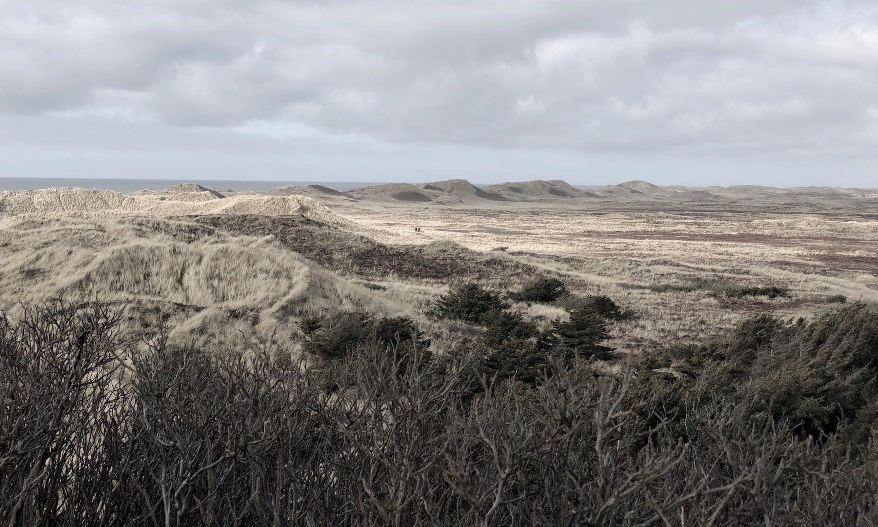 Lyngvig Fyr og Vesterhavet